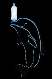bottlenosed dolphin, bottle nose, PET bottle, plastic, ocean pollution