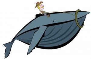 whale-990290_1920