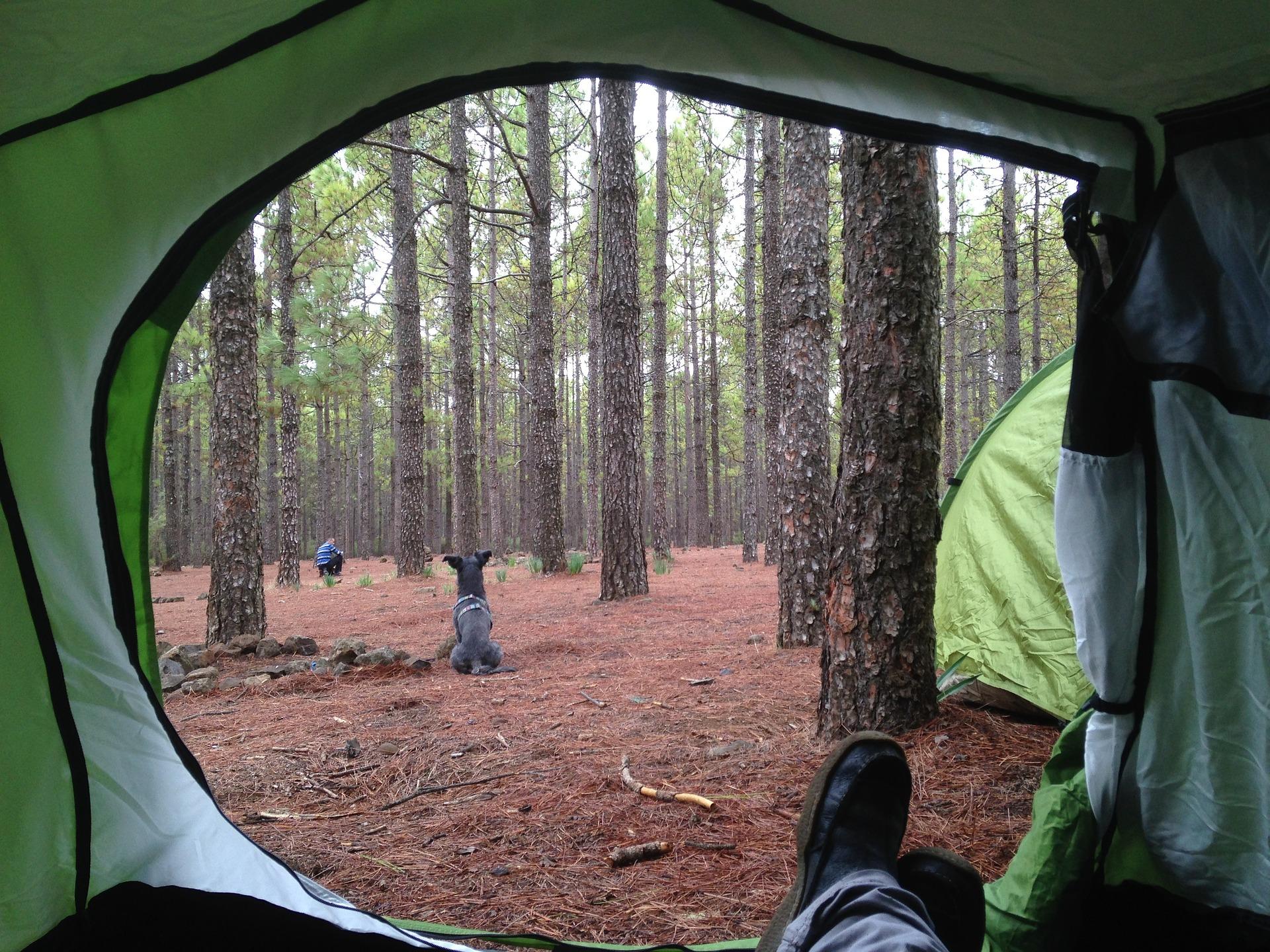 camping-1035272_1920